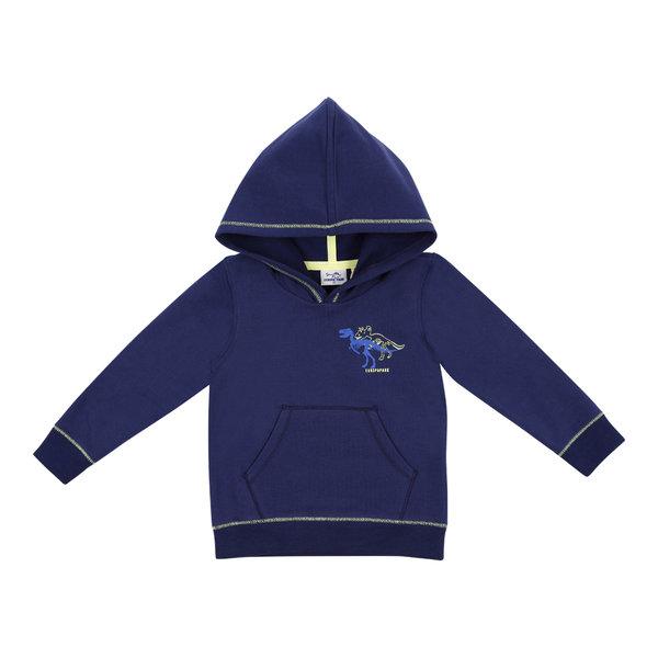 Jungen Sweatshirt navy Dino